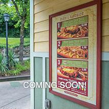 Dollywood Park Info