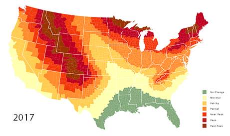 Fall foliage map 2017 nationwide peak leaf forecast for When will the leaves start changing 2017