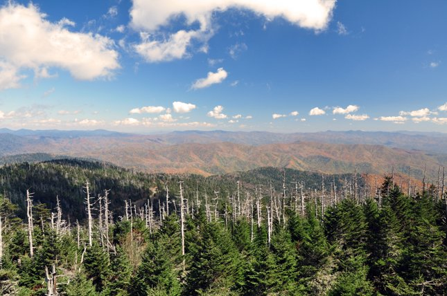 Summit of Clingmans Dome Hike