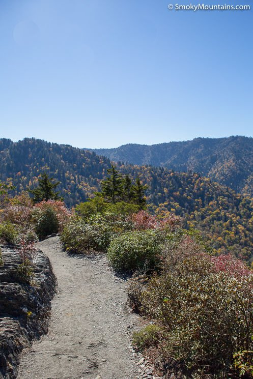 National Park Hikes - Alum Cave Trail to Mount LeConte - Original Photo