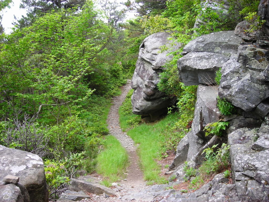Boulders_Along_Rainbow_Falls_Trail