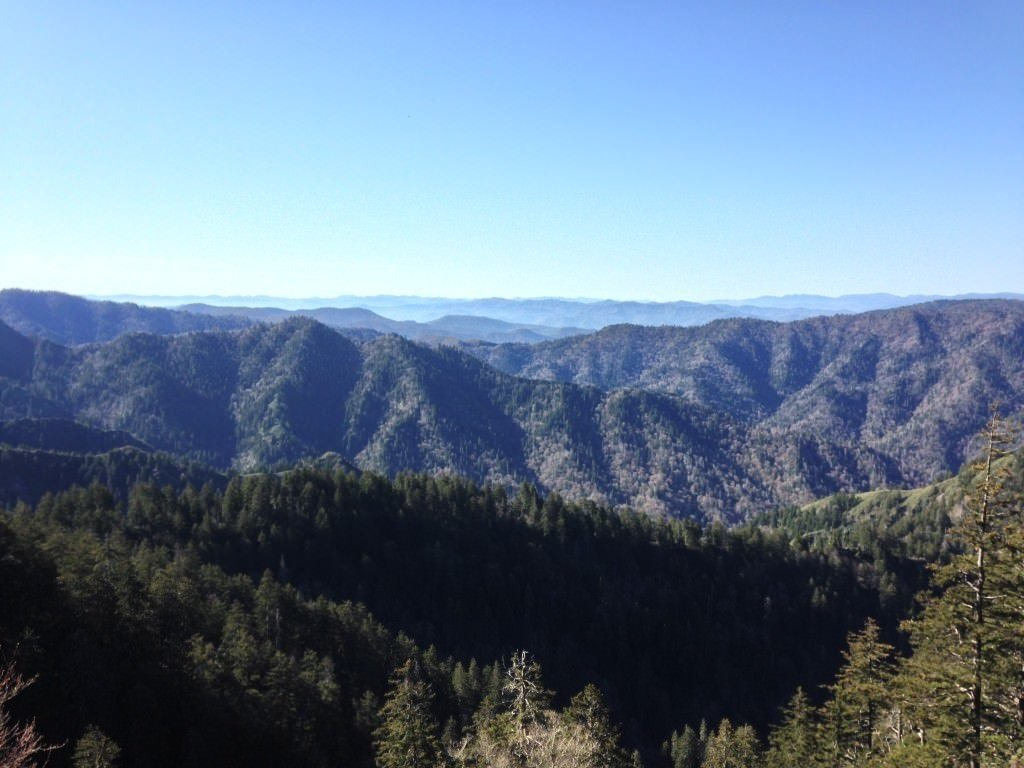 Beautiful view on alum cave trail to mount leconte