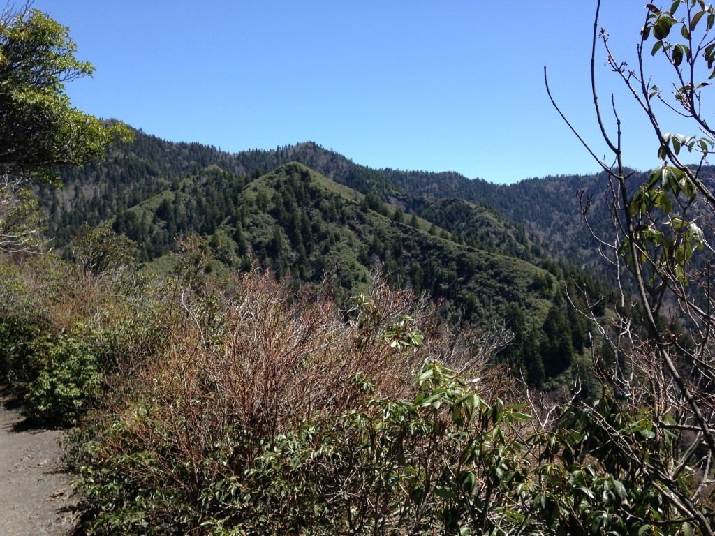 Inspiration Point on Leconte Trail