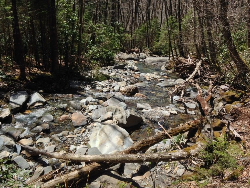 Beautiful stream on first part of alum cave trail