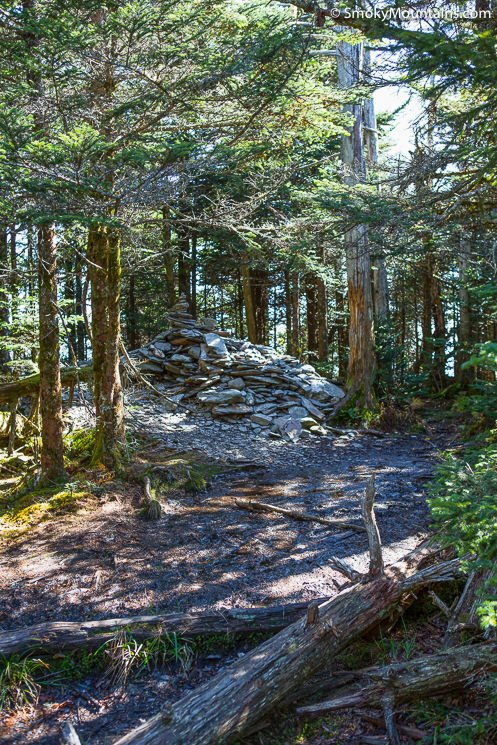 National Park Hikes - Rainbow Falls Trail to Mount LeConte - Original Photo