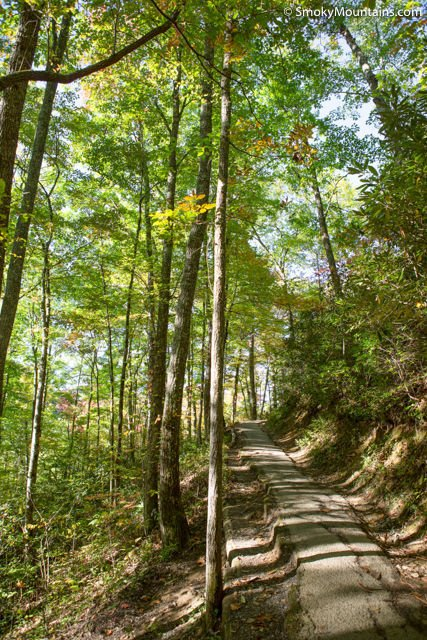 Laurel-Falls-Smoky-Mountains-1-3