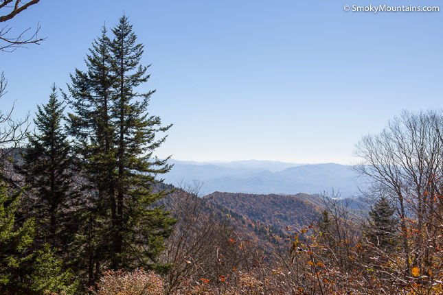 National Park Hikes - Andrews Bald Hiking Trail - Original Photo