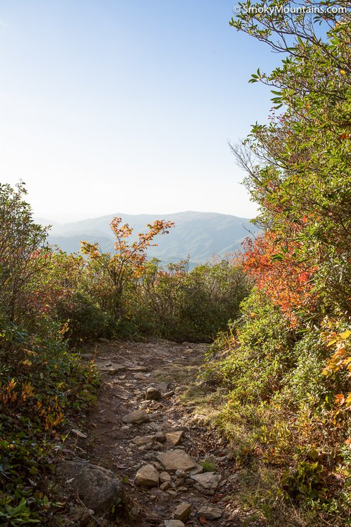 National Park Hikes - Mount LeConte via The Bullhead Trail - Original Photo