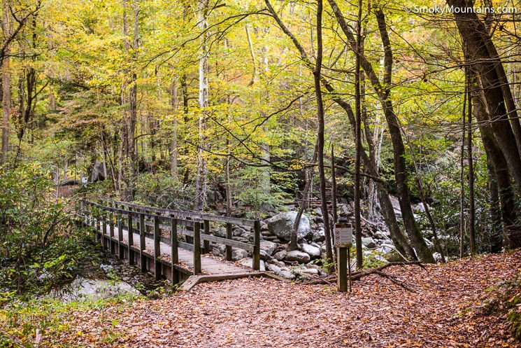 Ramsey-Cascade-Trail-Smoky-Mountains-1
