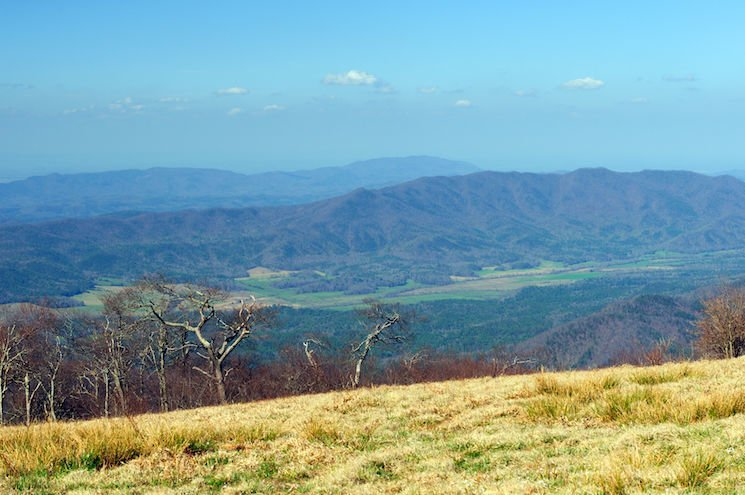 National Park Hikes - Gregory Bald Trail via Gregory Ridge - Original Photo