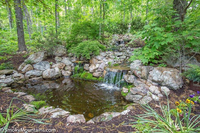 Beautiful Waterfall and Reflection Pool