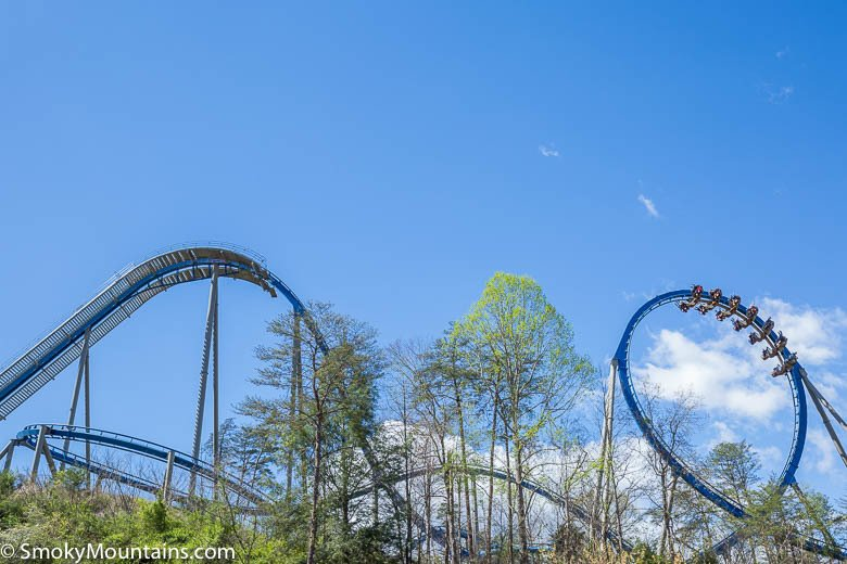 The Wild Eagle At Dollywood Review With Info Amp Photos