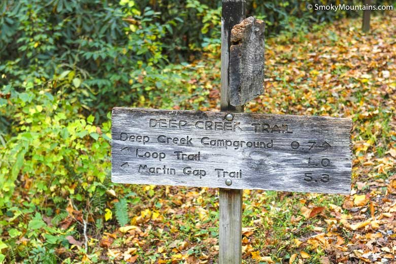 National Park Hikes - Deep Creek Loop Trail - Original Photo