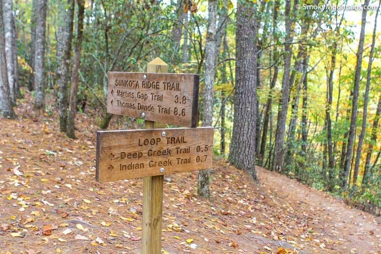 National Park Hikes - Deep Creek Loop Trail - Original Photo