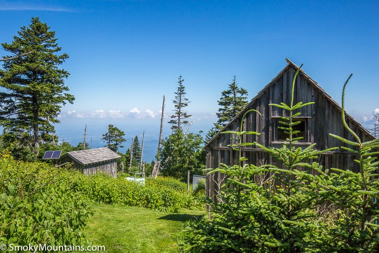 Mt-Leconte-Via-Trillium-National-Park-Hike-78