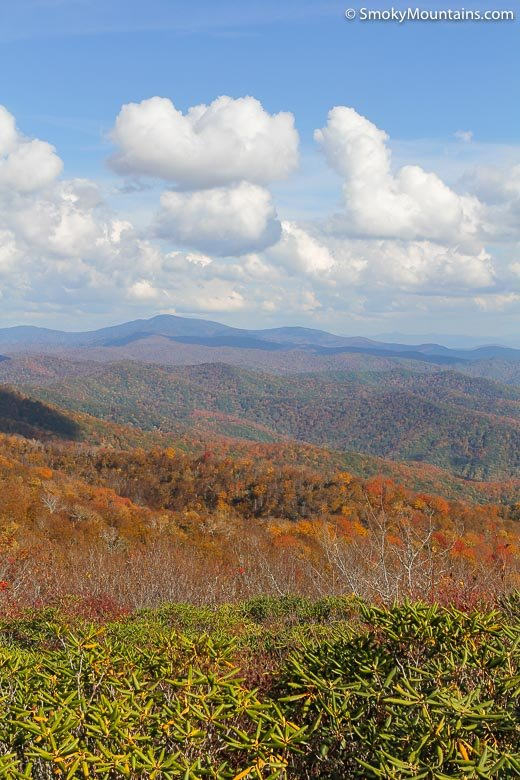National Park Hikes - Rocky Top Trail - Original Photo