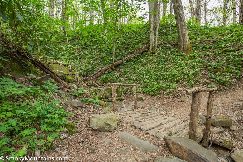 Cove Hardwood Trail Hiking Review W 41 Photos