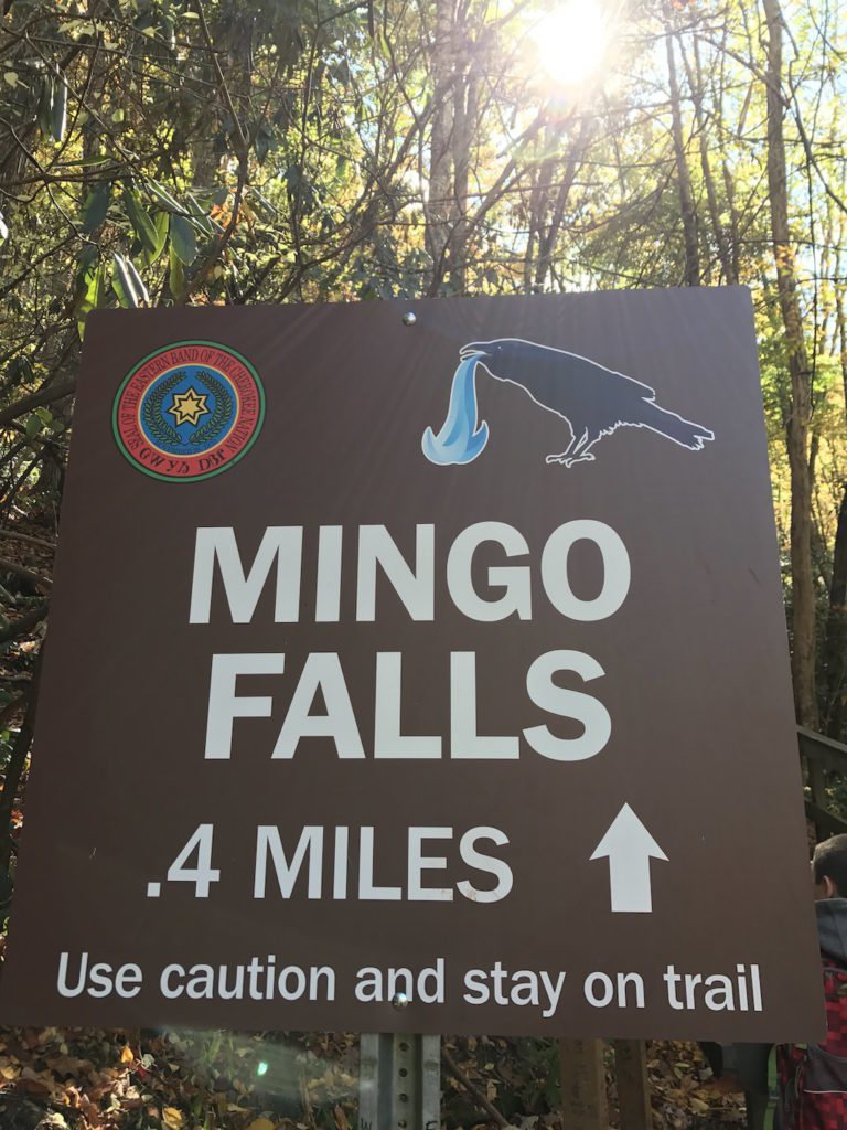 National Park Hikes - Mingo Falls - Original Photo