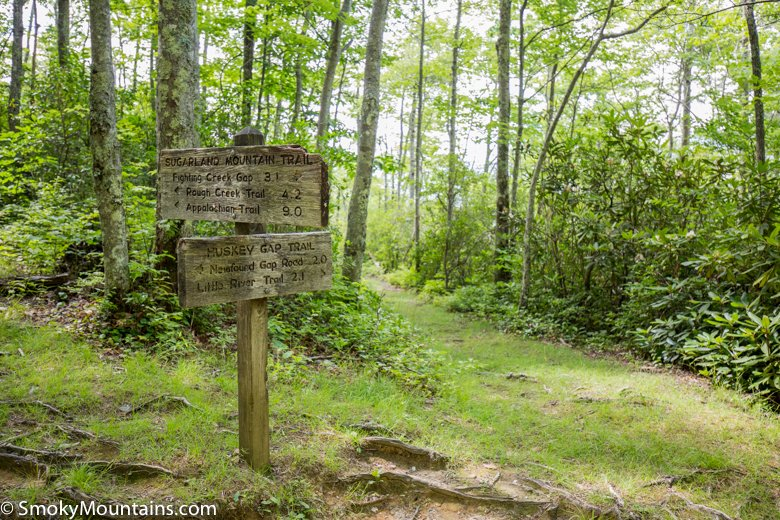 National Park Hikes - Huskey Gap Trail - Original Photo