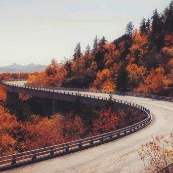 Fall Foliage Map Nationwide Peak Leaf Forecast - Us foliage map