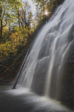 Asheville Hikes