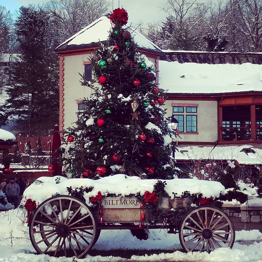 Insider\'s Guide to Christmas at the Biltmore w/ Photos
