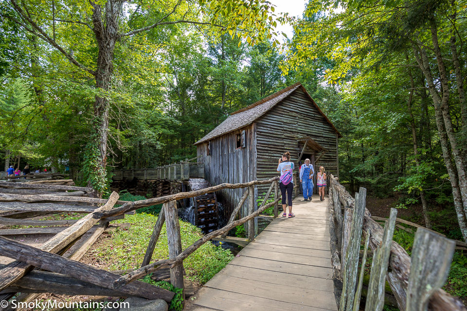 10 Fun Things to Do in Cades Cove