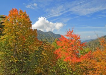 Upcoming Events in Great Smoky Mountains National Park: September 2018
