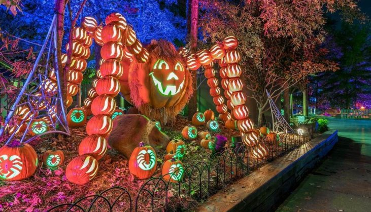 Upcoming Events at Dollywood: Oct  1 to Nov  30, 2018