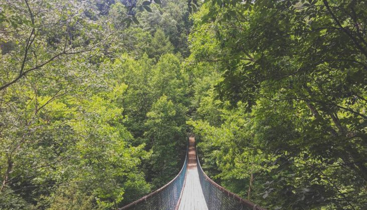10 Best Things To Do In Sevierville Tn Smokymountains Com