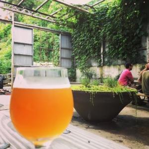 Beer in Beer Garden at Hi-Wire