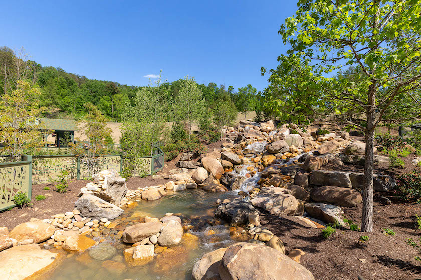 9 Reasons You Simply Must Visit Wildwood Grove