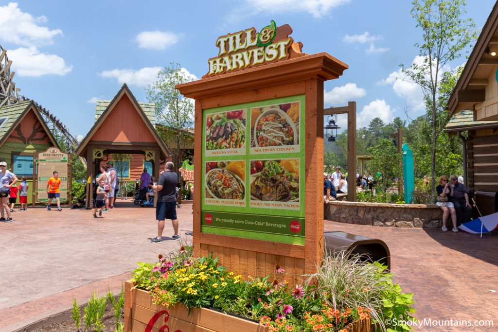 Dollywood Food - Till and Harvest at Wildwood Grove - Original Photo
