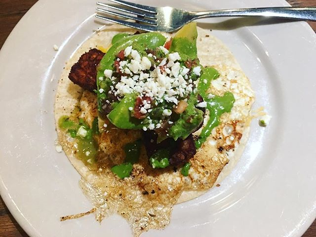 street taco on plate piled high with tempeh, avocado and cotija cheese