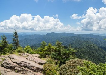 The 7 Best Trails to Hike in the Great Smoky Mountains