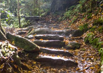 6 Reasons to Hike the Rainbow Falls Trail