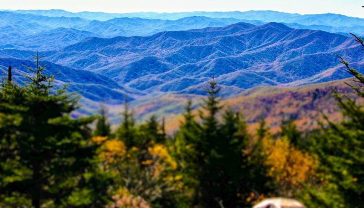 6 Cabins To Book This Fall With Great Views In The Smoky Mountains Smokymountains Com