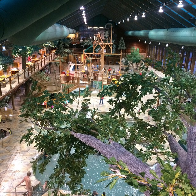 aerial view of wild bear falls water park, jungle gym and lots of trees