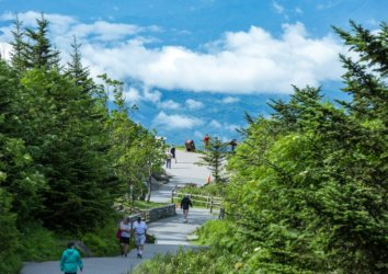 9 Essential Attractions and Activities in Great Smoky Mountains National Park