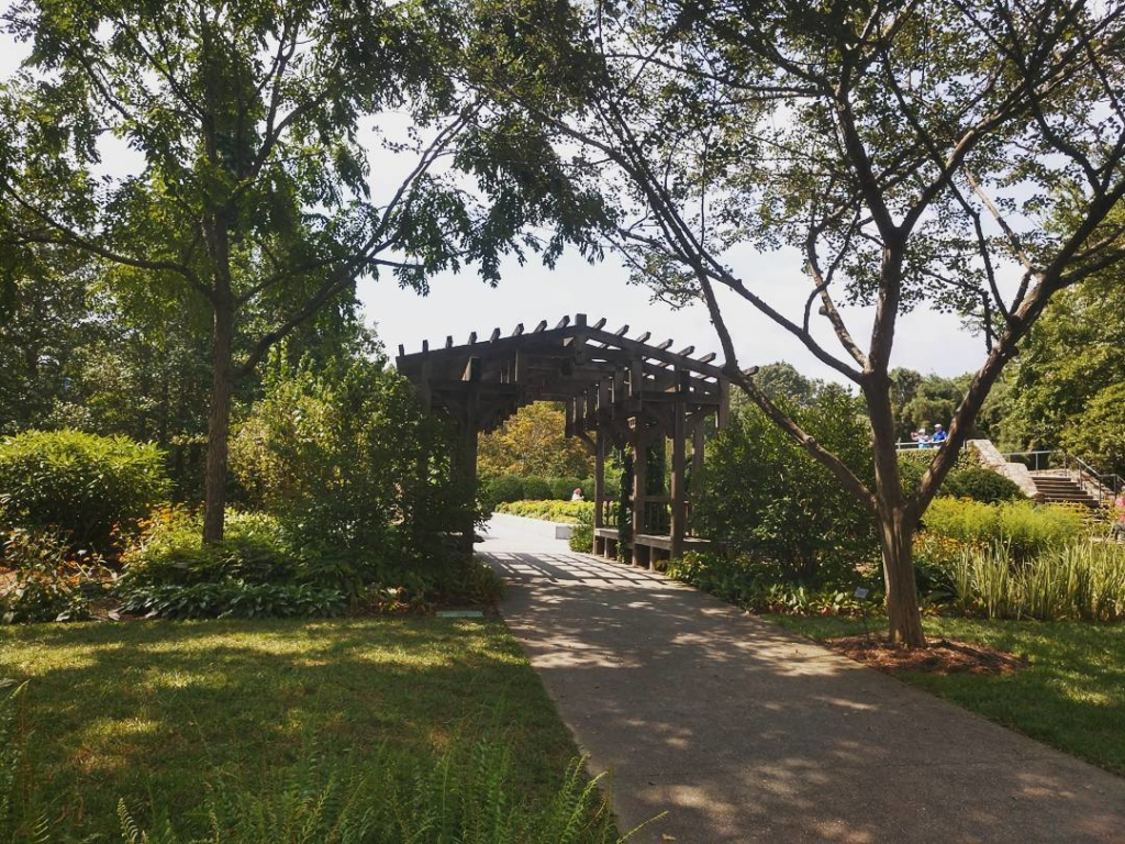 lush green garden with wooden archway