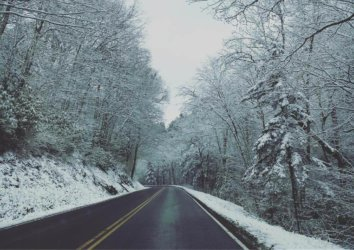 Great Smoky Mountains National Park: Winter Guide