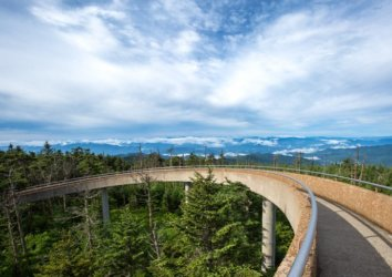 7 Virtual Hikes and Drives in the Great Smoky Mountains National Park