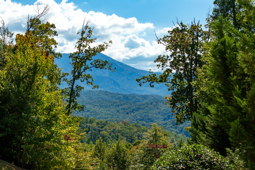 The Best Places to Shop for Groceries During A Smoky Mountains Getaway