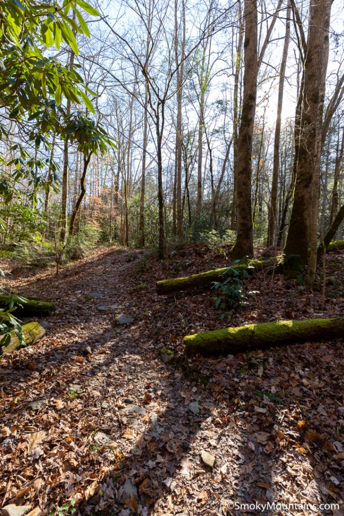 National Park Hikes - Old Sugarlands Trail - Original Photo