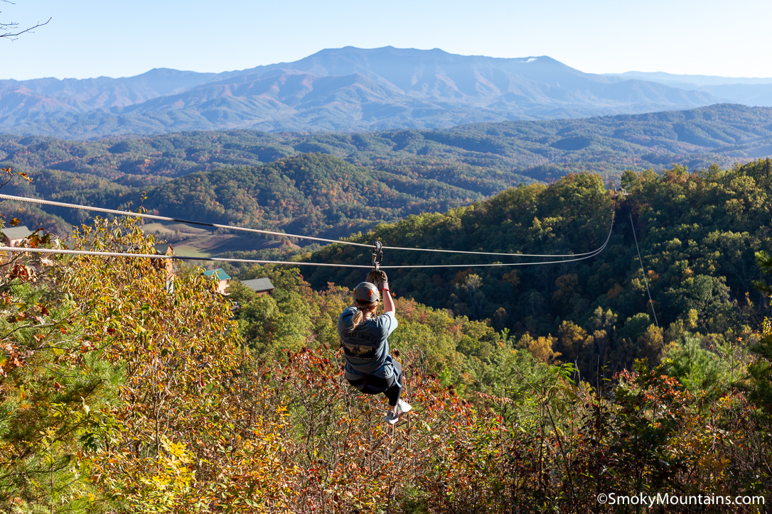10 Reasons Why You Need to Experience Legacy Mountain Ziplines
