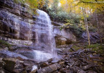 Three Best Things to See in the Great Smoky Mountains This Summer