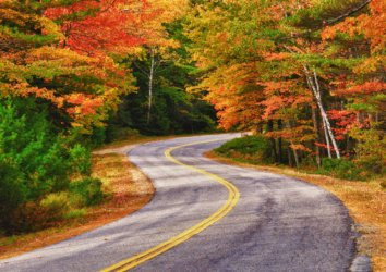 Experience the World-class Fall Colors of the Great Smoky Mountains