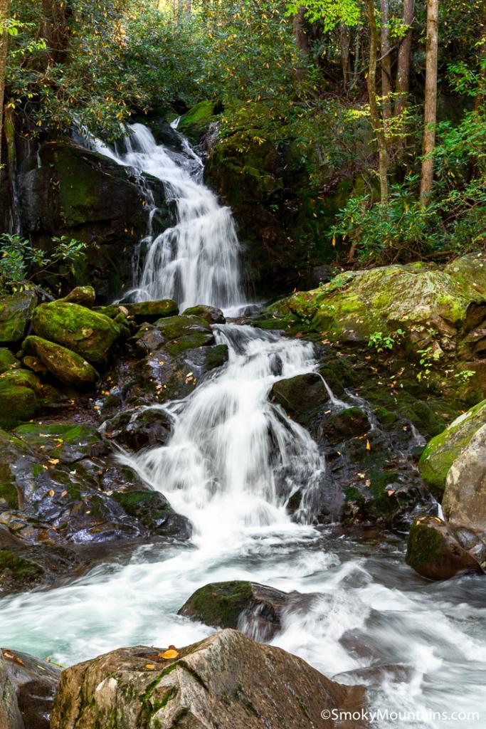National Park Hikes - Mouse Creek Falls - Original Photo