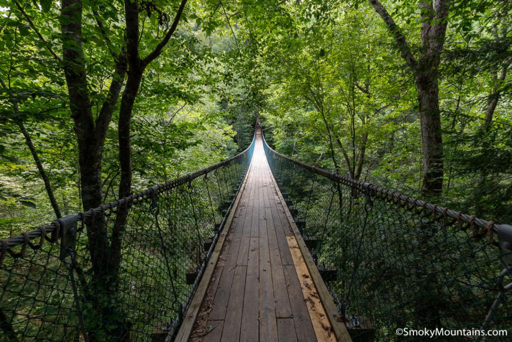 Sevierville Things To Do - Foxfire Mountain Adventure Park - Original Photo