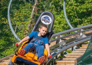5 Reasons to Take a Ride on the Smoky Mountain Alpine Coaster